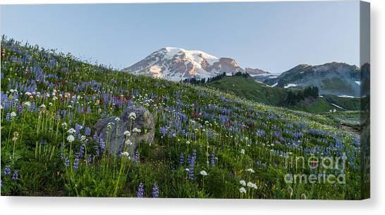 Mount Rainier Canvas Print - Meadows Of Glory by Mike Reid