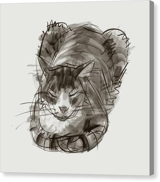 Meditating Cat Canvas Print
