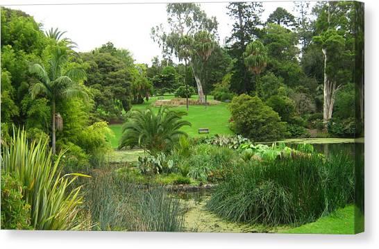 Melbourne Botanical Gardens Canvas Print