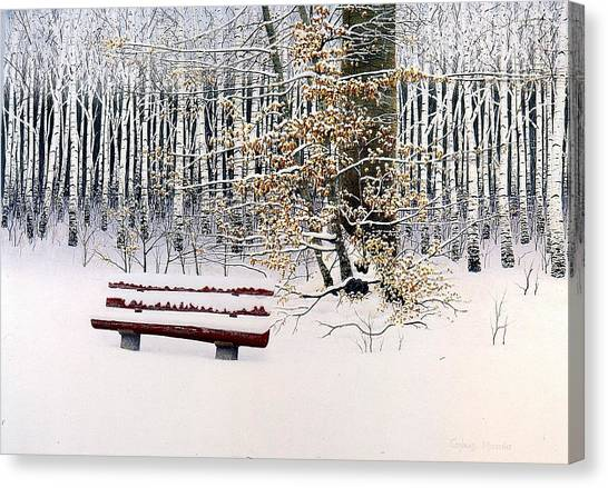 Memories Of Birchtrees Canvas Print by Conrad Mieschke