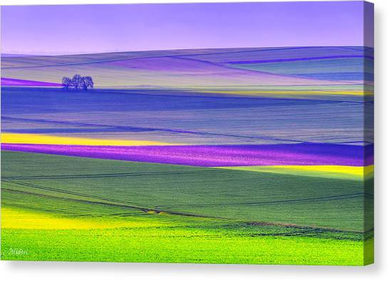 Memories Of Colors Canvas Print