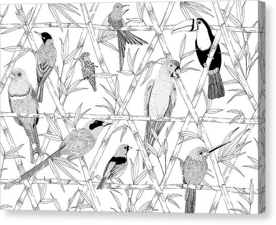 Amazon Rainforest Canvas Print - Menagerie Black And White by Jacqueline Colley