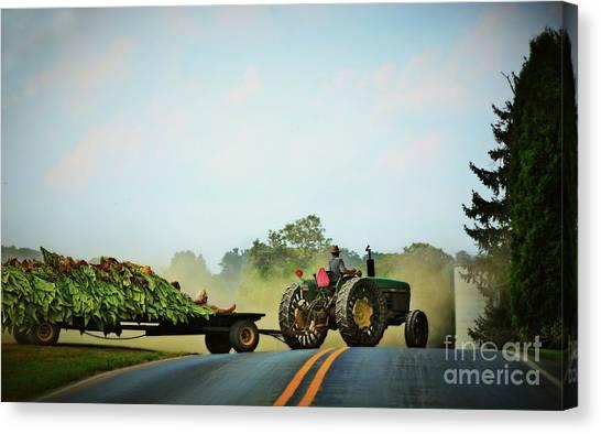 Menonnite Tobacco Farmer And Wife Canvas Print