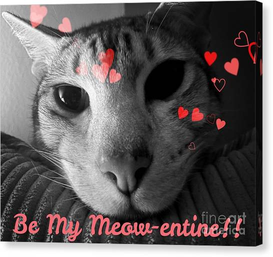 Ocicats Canvas Print - Meow-entine by Jenny Revitz Soper