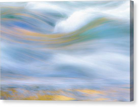 Glaciers Canvas Print - Merced River Reflections 19 by Larry Marshall