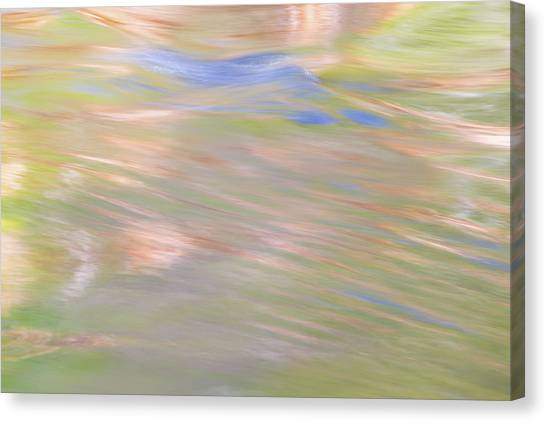 Bear Lake Canvas Print - Merced River Reflections 20 by Larry Marshall