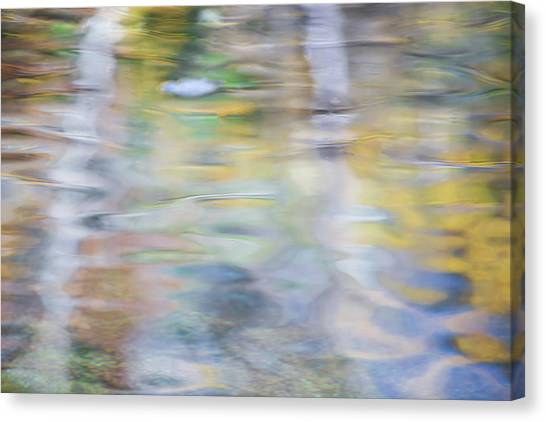 Yosemite National Park Canvas Print - Merced River Reflections 6 by Larry Marshall