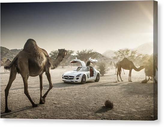 Mercedes Benz Sls With Camels In Saudi Canvas Print