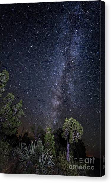 Verde Canvas Print - Mes Verde Sky by Twenty Two North Photography