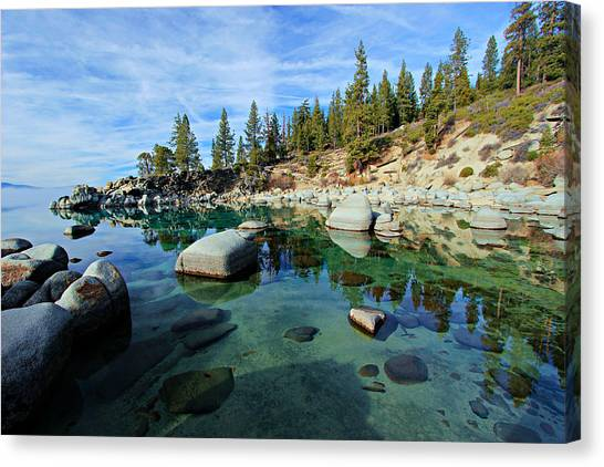 Canvas Print featuring the photograph Mesmerized by Sean Sarsfield