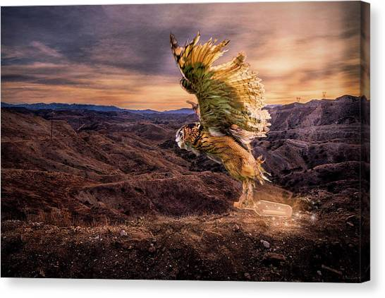 Messenger Of Hope Canvas Print