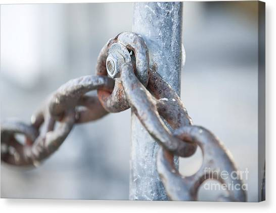 Chain Link Fence Canvas Print - Metal Chain Railing Fragment by Elena Elisseeva