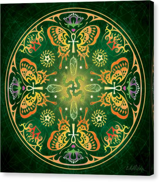 Caterpillars Canvas Print - Metamorphosis Mandala by Cristina McAllister