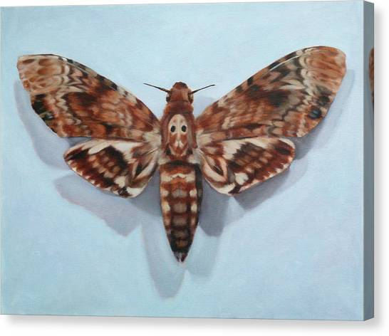 Silence Of The Lambs Canvas Print - Metamorphosis by Shanon Playford
