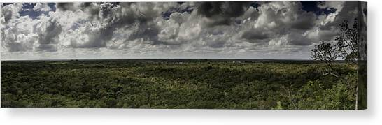 Mexican Jungle Panoramic Canvas Print
