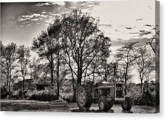 Mf 285 Tractor Canvas Print