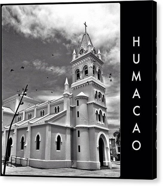 Dove Canvas Print - Mi Amado Pueblo #humacao #puertorico by Havito Nopal