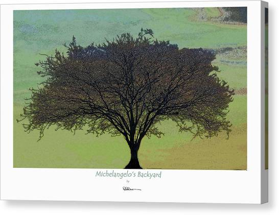 Michelangelo's Backyard Canvas Print