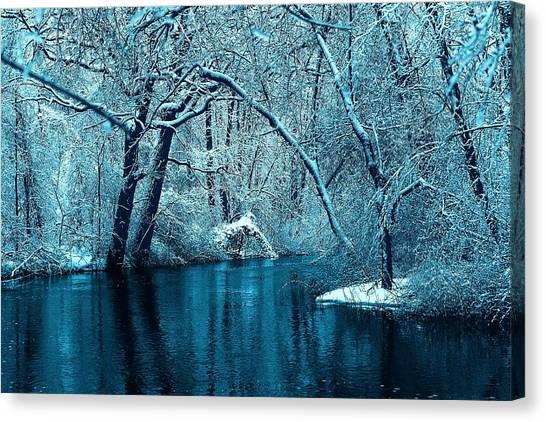 Michigan Winter 14 Canvas Print
