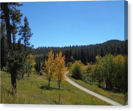 Mickelson Trail Canvas Print
