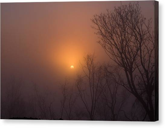 Mid Day Fog Canvas Print by Naman Imagery