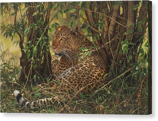 Midday Siesta Canvas Print