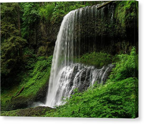Middle Falls Canvas Print