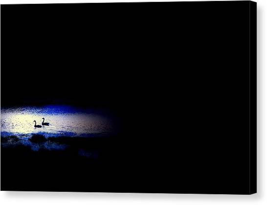 Midnight Float Canvas Print