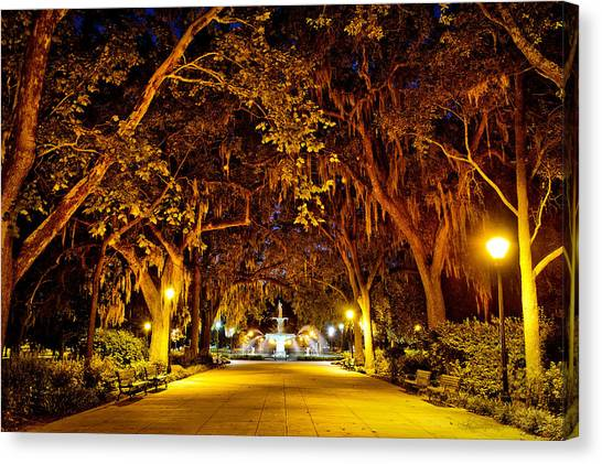 Midnight In The Garden Canvas Print