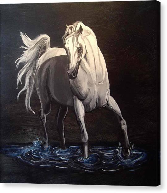Midnight Prance Canvas Print by Glenda Smith