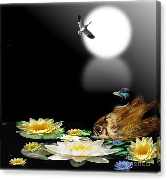 Midnight Serenity Canvas Print