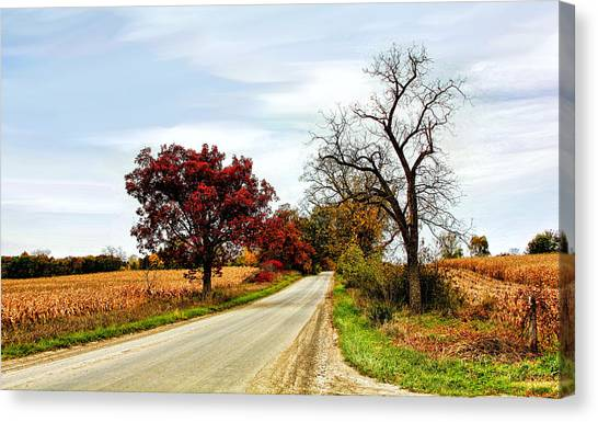 Midwest Autumn  Canvas Print