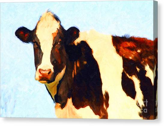 Livestock Canvas Print - Milk Cow . Photoart by Wingsdomain Art and Photography