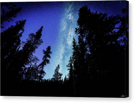 Milky Way Among The Trees Canvas Print