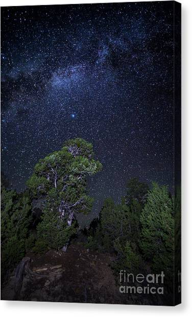Verde Canvas Print - Milky Way Over Mesa Verde by Twenty Two North Photography