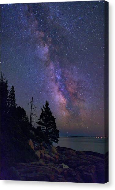 Otters Canvas Print - Milky Way Over Otter Point by Rick Berk