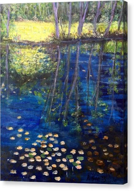 Mill Brook Kingston N H Canvas Print
