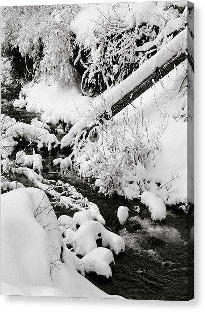 Mill Creek Canyon In Winter Canvas Print by Dennis Hammer