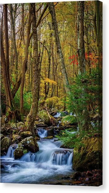 Mill Creek In Fall #1 Canvas Print