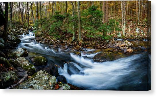 Mill Creek In Fall #2 Canvas Print