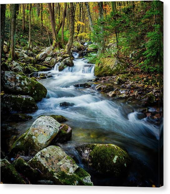 Mill Creek In Fall #3 Canvas Print