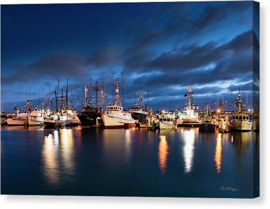 Canvas Print featuring the photograph Millie by Dan McGeorge