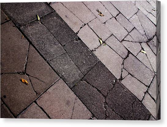 Mind The Cracks Canvas Print by Jez C Self