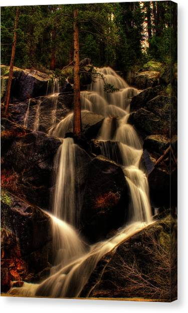 Quaking Aspen Falls Along Tioga Pass  Canvas Print
