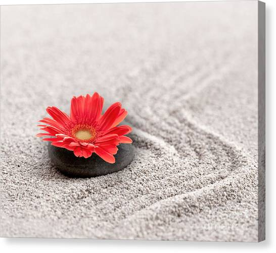 Japanese Garden Canvas Print - Mineral Flower by Delphimages Photo Creations