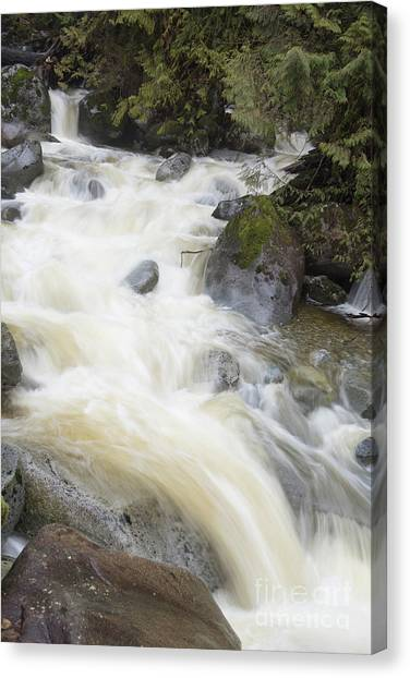Mini Plunge Canvas Print
