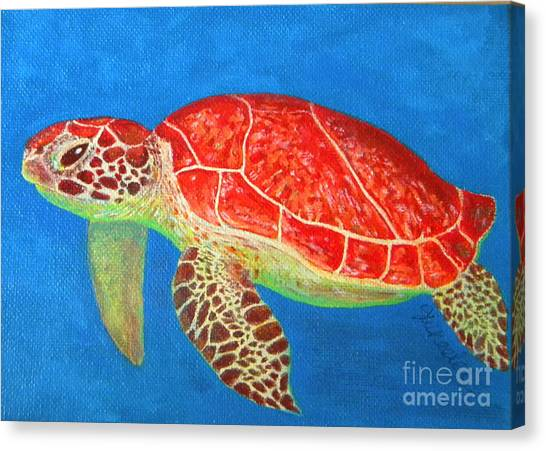 Carribbean Canvas Print - Mini Turtle by JoAnn Wheeler
