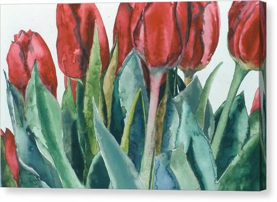 Mini-valentine Tulips - 2 Canvas Print by Caron Sloan Zuger