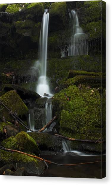 Mini Waterfall In The Forest Canvas Print
