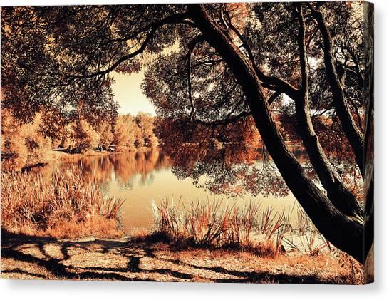 Jenny Lake Canvas Print - Miracle. Airy Lace Of Autumn by Jenny Rainbow